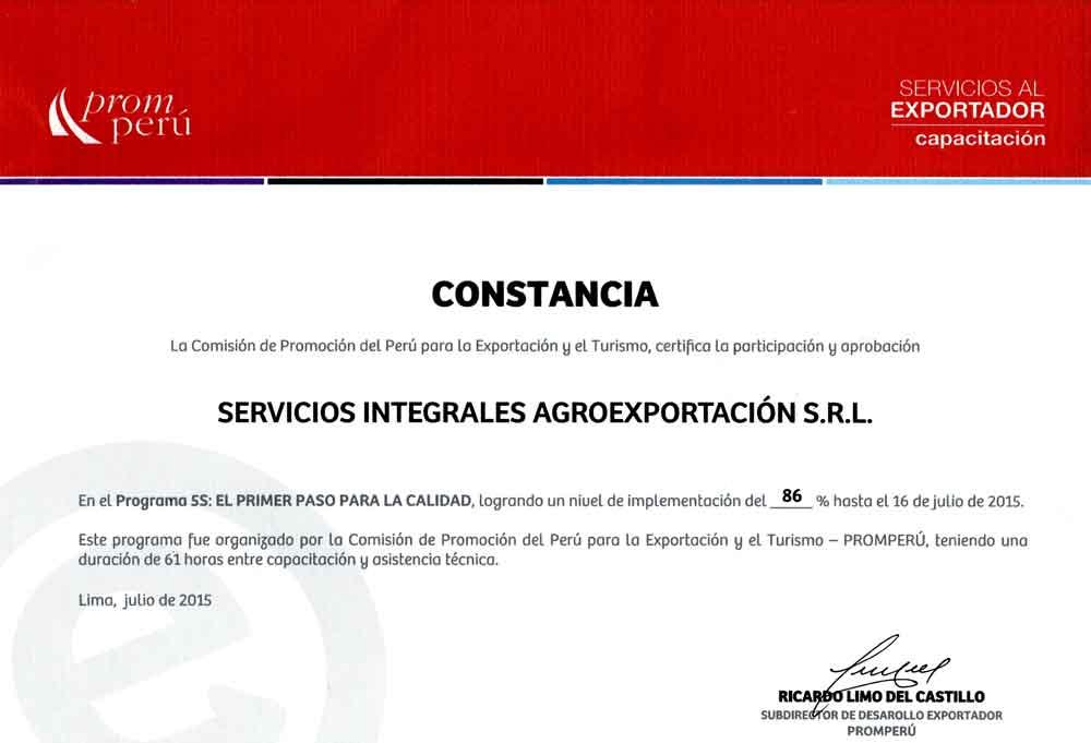 Constancia Programa 5s Siagro Export