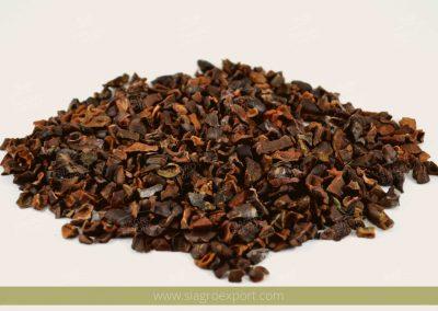 Cacao nibs (Theobroma cacao)